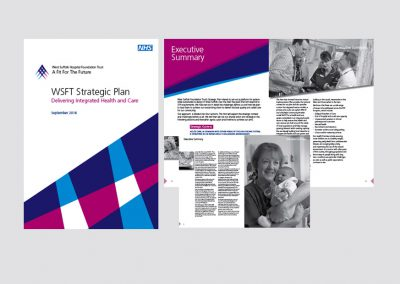 NHS Strategic Summary